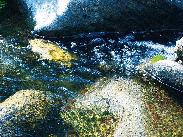 Наблюдая за течение ручья можно понять, как хочет двигаться вода