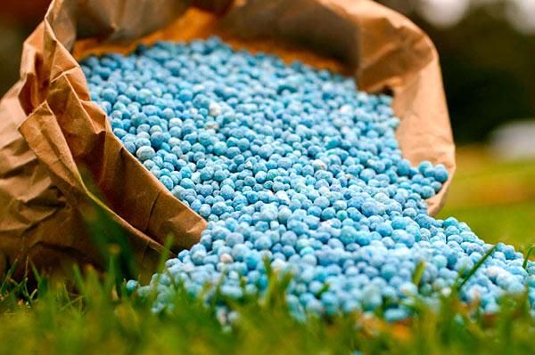 Казахстанские аграрии могут положиться на производителей удобрений