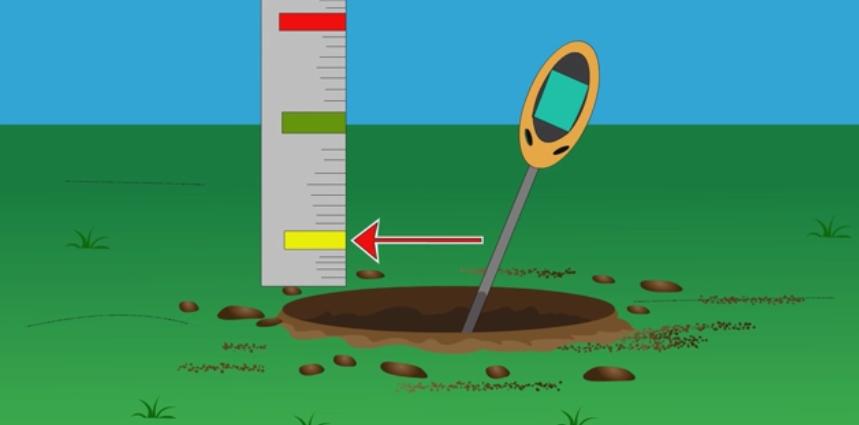 Фото 4. WikiHow: Как определить кислотность почвы подручными средствами