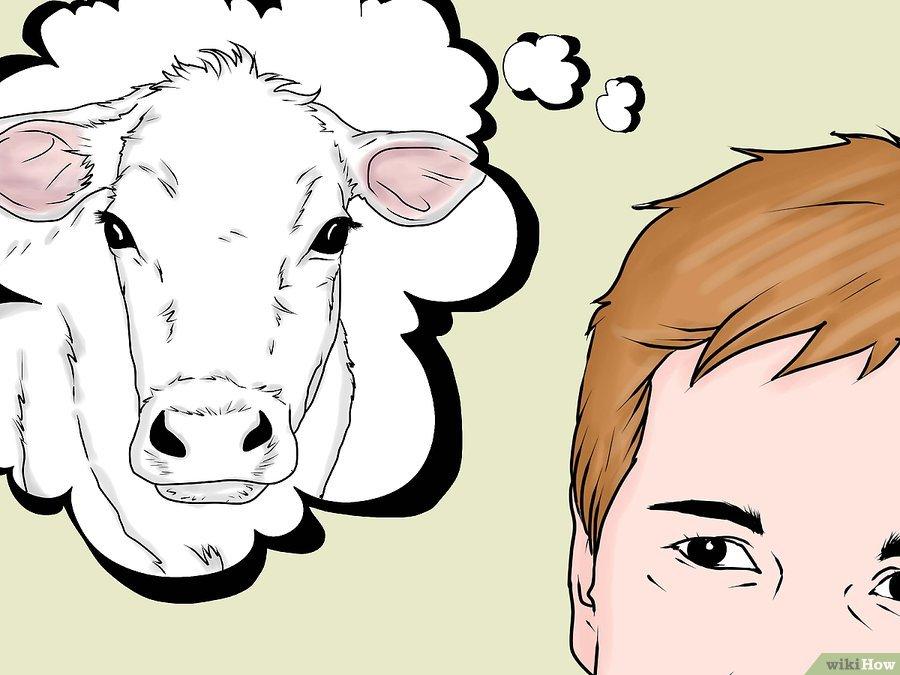 Фото 1. WikiHow: Как делать уколы крупному рогатому скоту