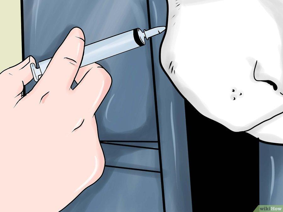 Фото 5. WikiHow: Как делать уколы крупному рогатому скоту