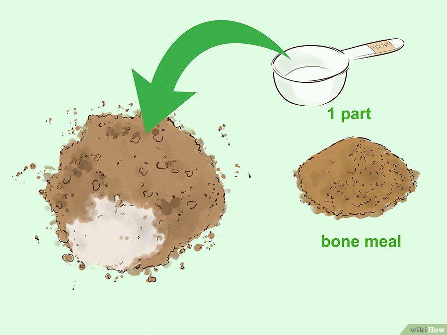 Фото 4. WikiHow: Как сделать удобрение своими руками (ГРАФИКА)