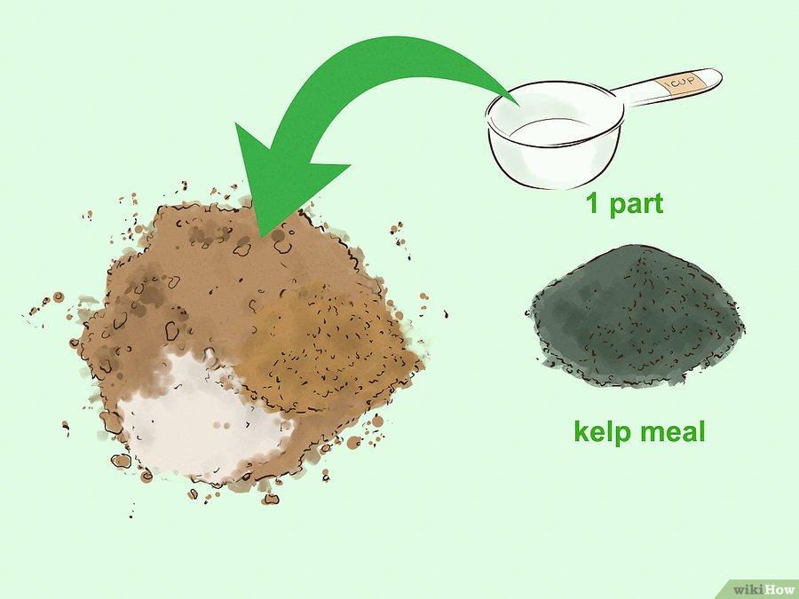 Фото 5. WikiHow: Как сделать удобрение своими руками (ГРАФИКА)