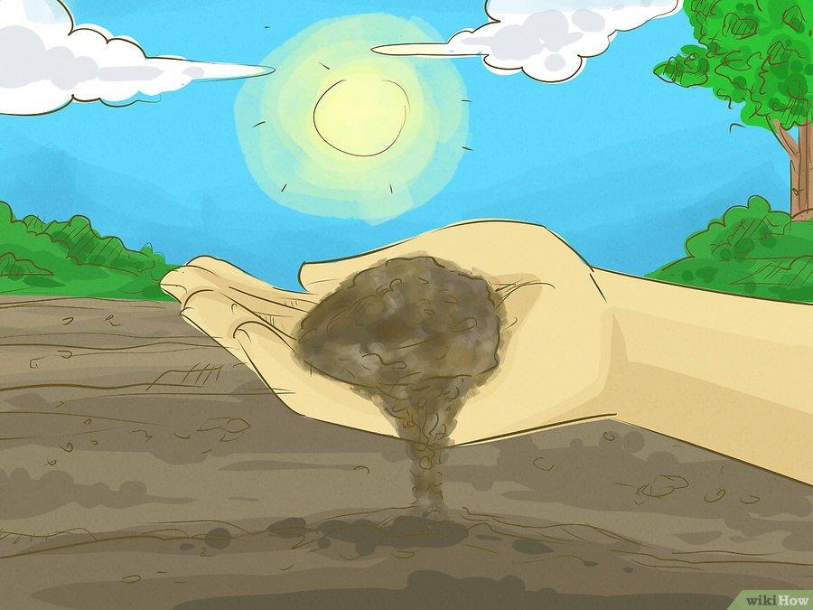 Фото 6. WikiHow: Как сделать удобрение своими руками (ГРАФИКА)