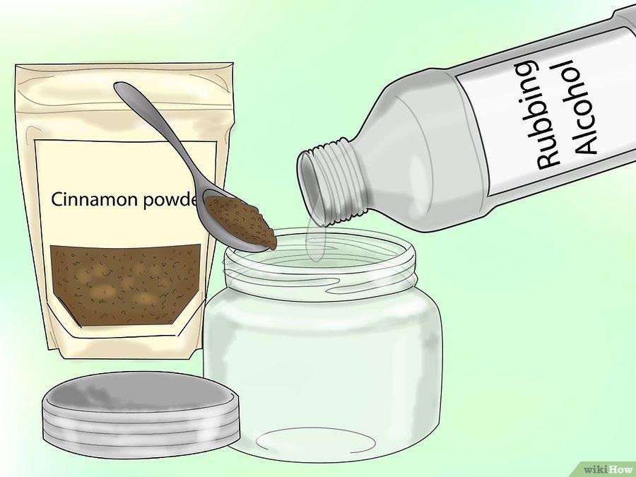 Фото 11. WikiHow: Как сделать спрей против мучнистой росы
