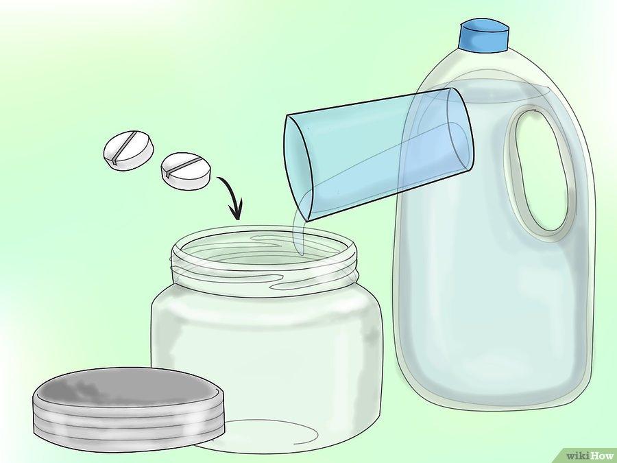 Фото 16. WikiHow: Как сделать спрей против мучнистой росы