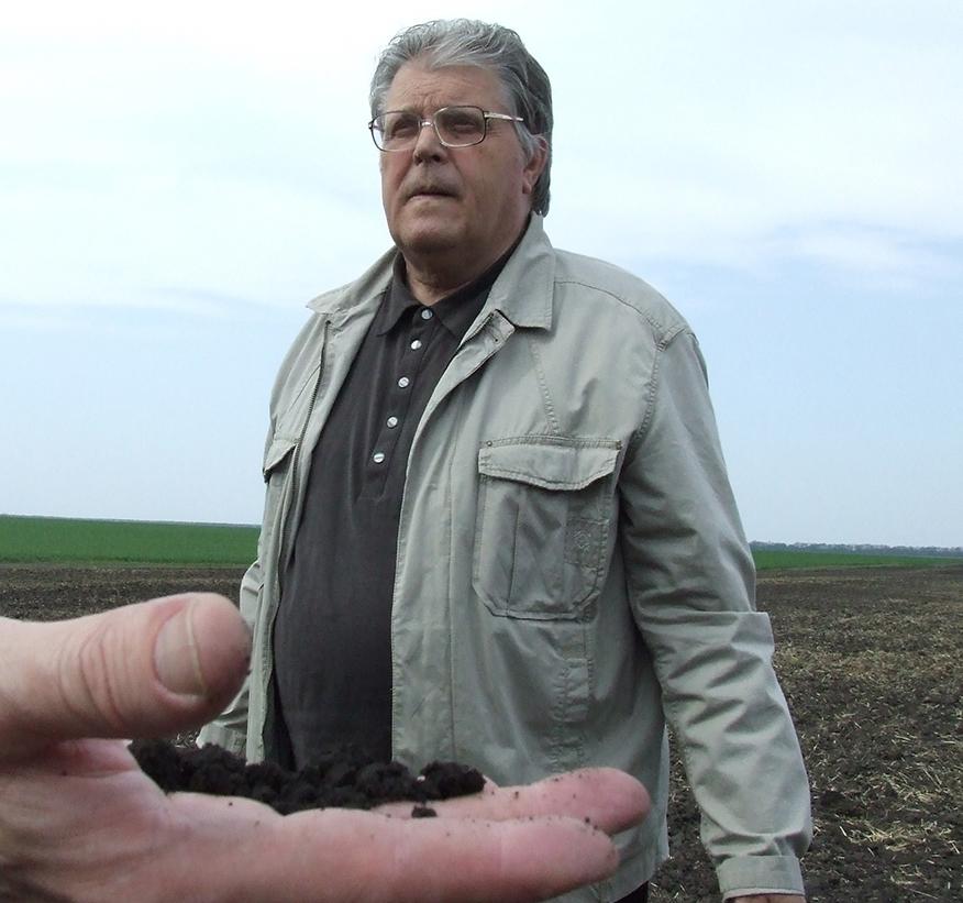 Сидерация: восстанавливаем почву, улучшаем будущий урожай