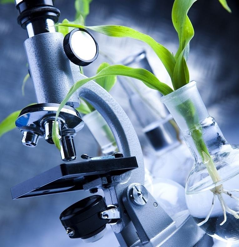 «АДОБ» – європейський лідер у галузі розробки та виробництва мікродобрив