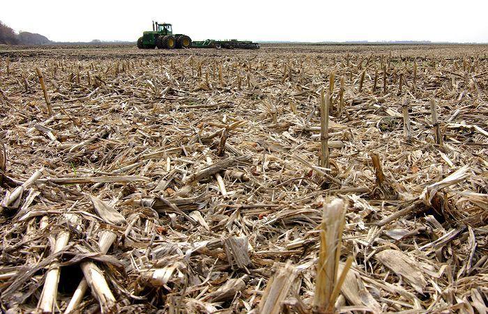 Беспахотная обработка почвы в Австралии: причины популярности