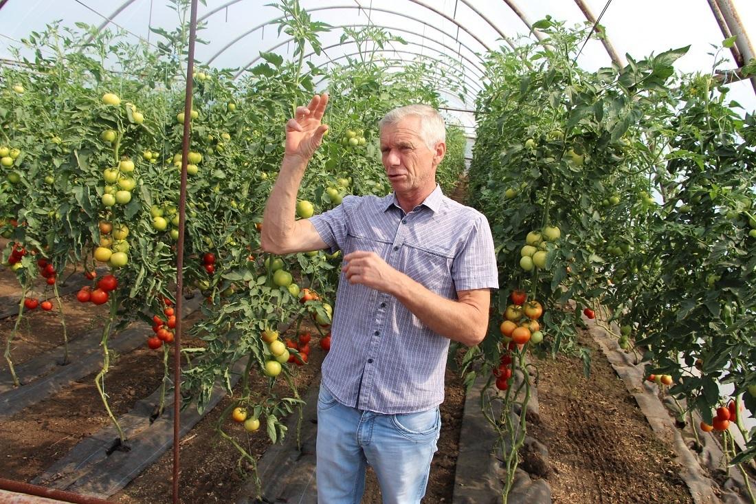 Агроном, продавец, экспериментатор