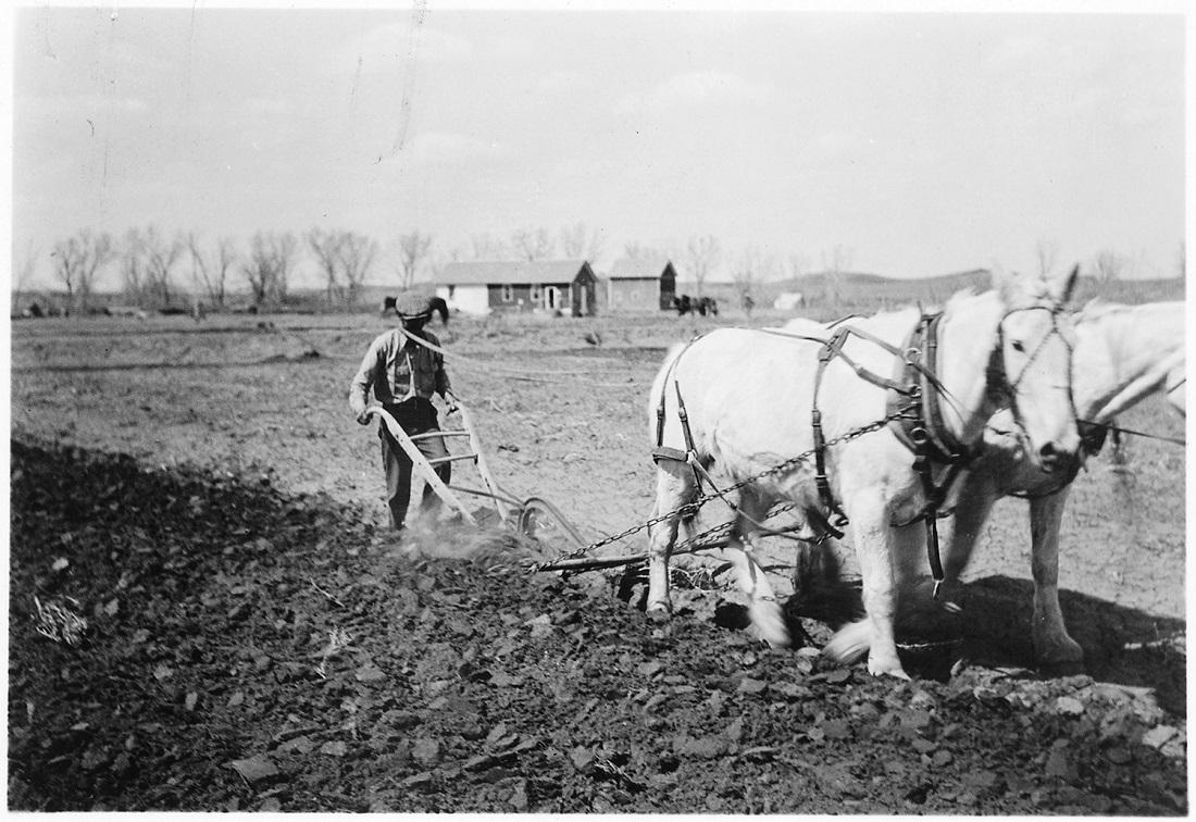 Історія ведення сільського господарства в Україні у системі державного регулювання