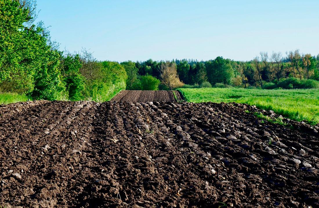 Фракции подписали меморандум о подготовке к рынку земли