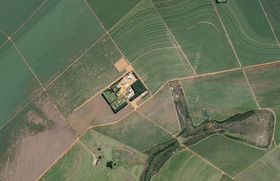 Кембриджским производителям яблок дроны сделали точнейшие прогнозы урожайности