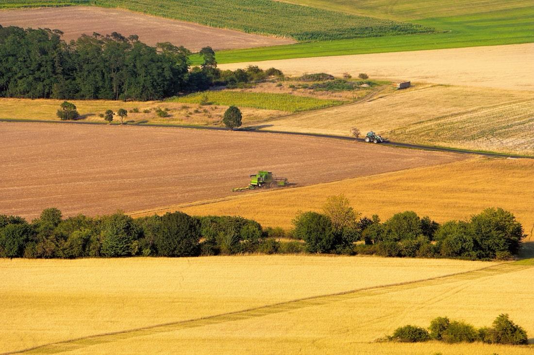 Новости агрохолдингов: приобретения, капитализация, назначения