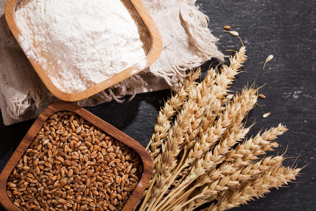 Украинская пшеница продемонстрировала рекордные показатели по содержанию белка