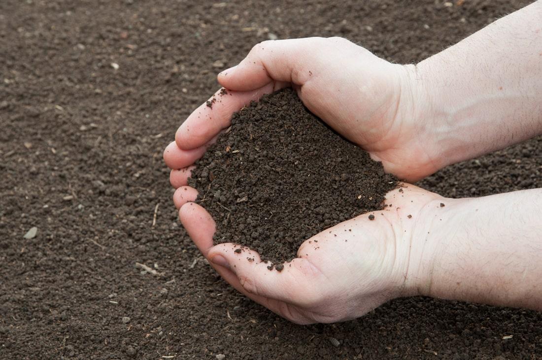 Власть не собирается давать больше 10 тысяч гектаров в одни руки