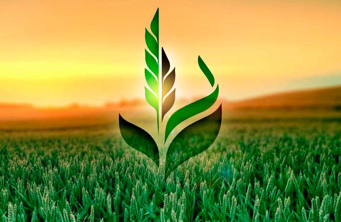 Аграрный фонд через биржу станет продавать пшеницу и муку