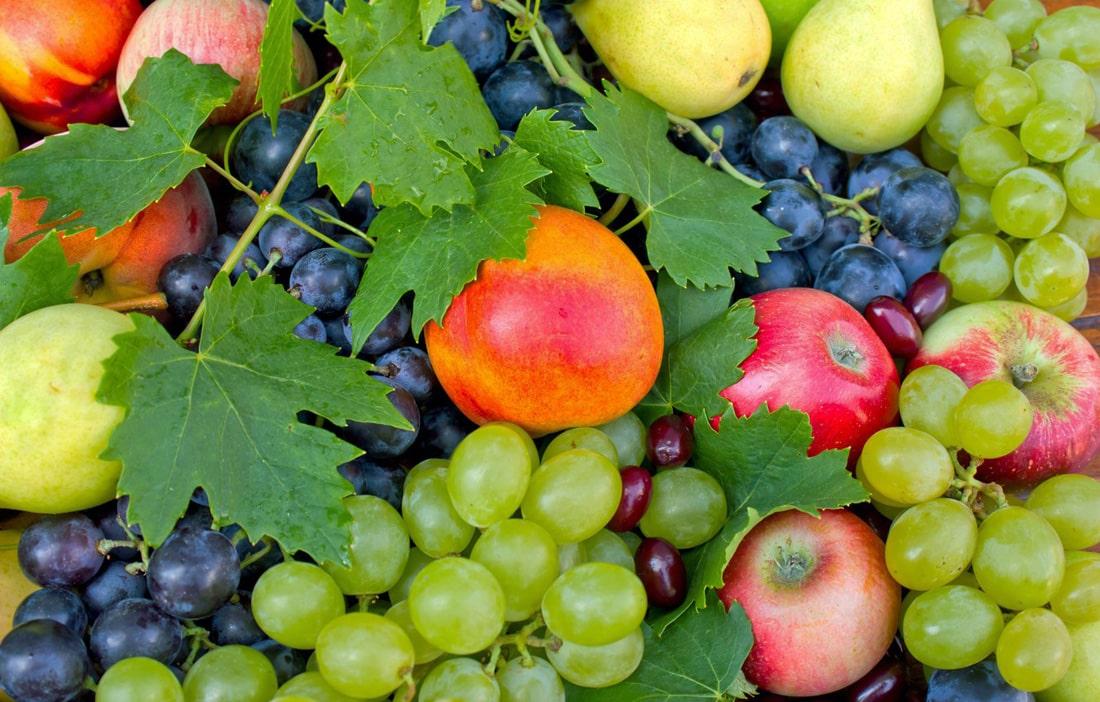Плодово-ягодные: сокращаются площади под яблоню и виноград