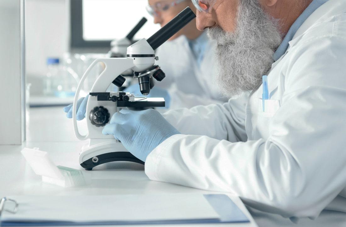 Ученые определили ген, защищающий сельскохозяйственные культуры от засоления почв и патогенов