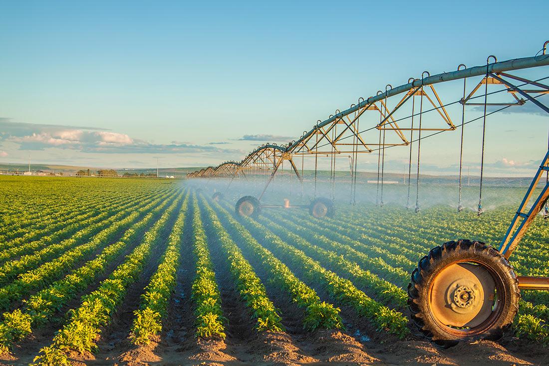 Аграрии могут взаимодействовать с государством по трём моделям орошения