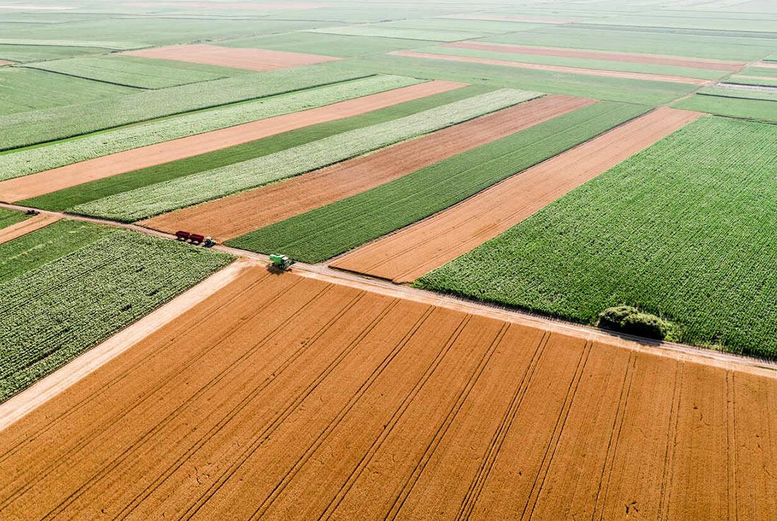 Аграрными расписками воспользовались свыше полутора тысяч сельхозпроизводителей