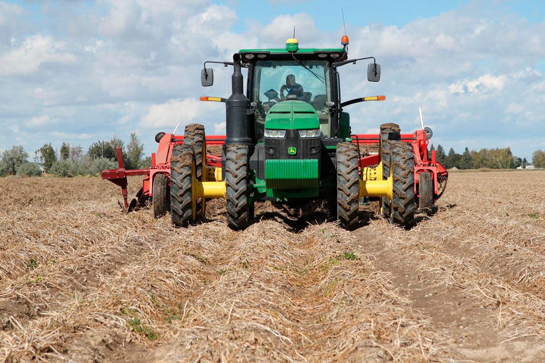 С начала 2020 года сельхозпроизводство продемонстрировало рост