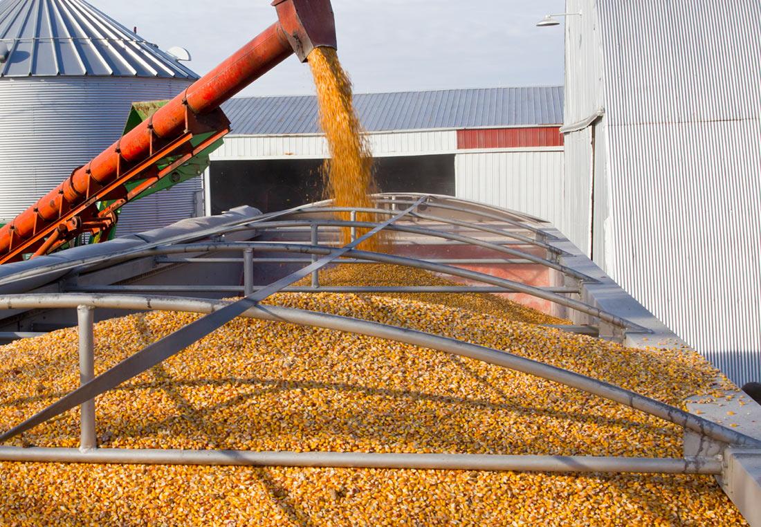 Украина отправила на внешние рынки свыше 44 млн. тонн зерна