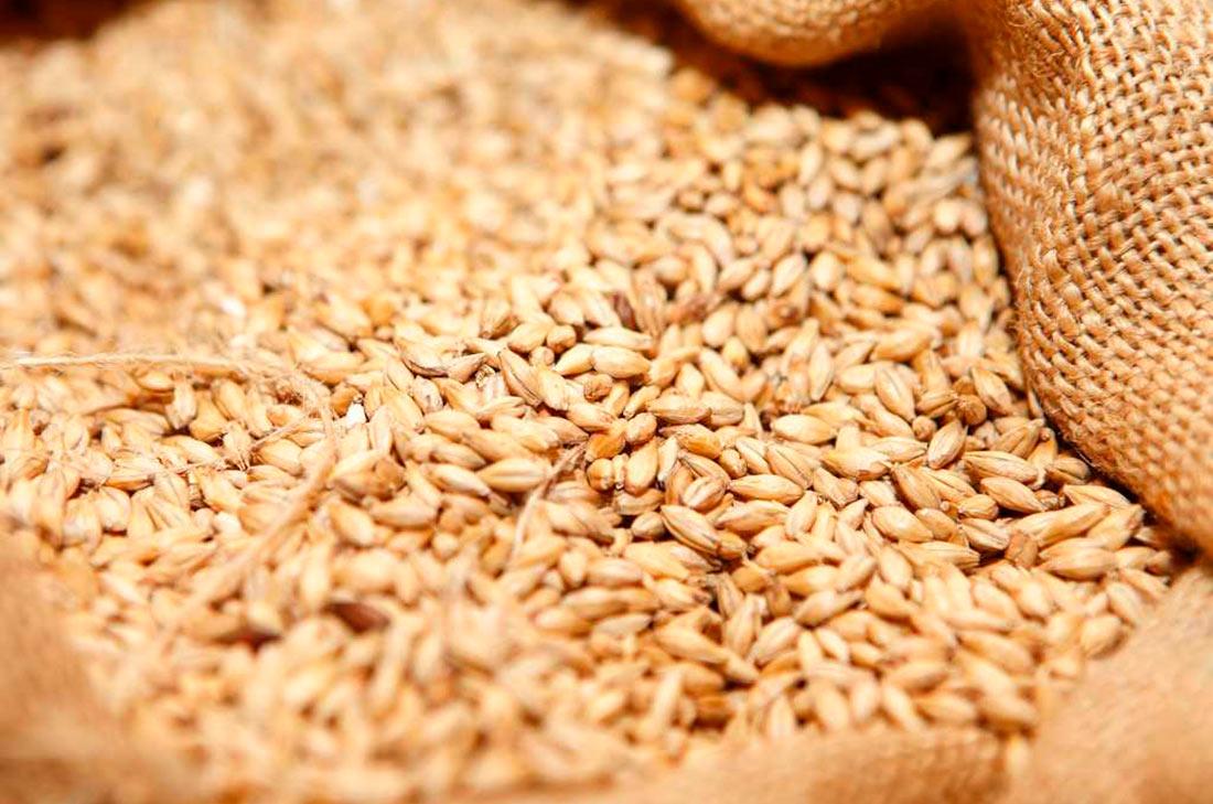 УЗА просит не допустить потерю рынка зерна