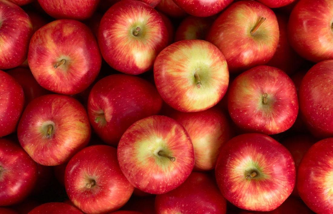 Яблочный экспорт: Украина поставила пятилетний рекорд