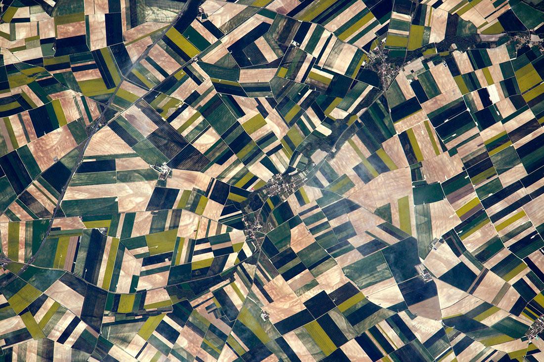 Аграрии смогут бесплатно мониторить поля из космоса