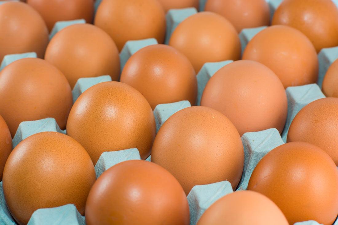 Из Украины в Израиль отправили 600 тысяч яиц