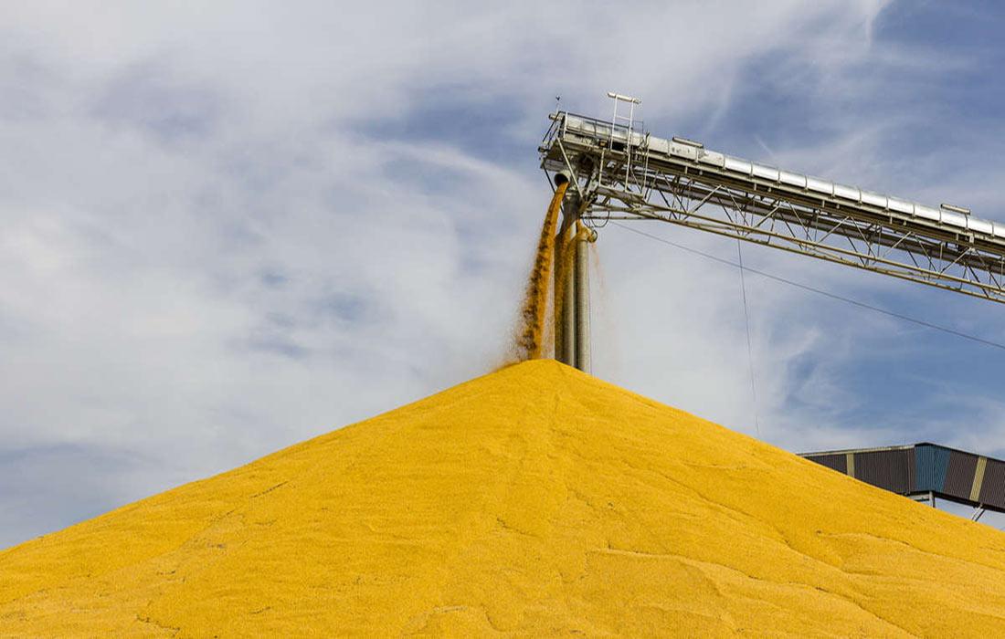 Март-2020: зерновозов стало много меньше