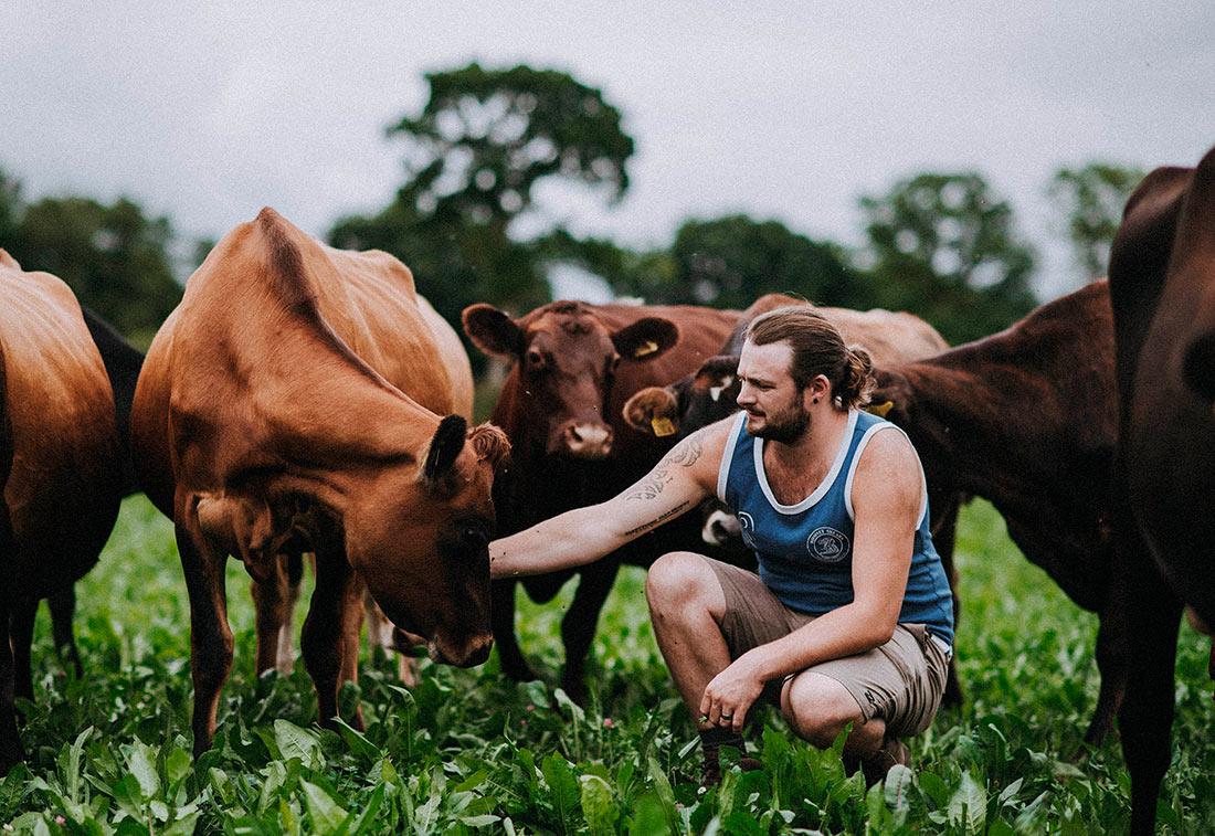 NBA выступила в поддержку британского сельского хозяйства