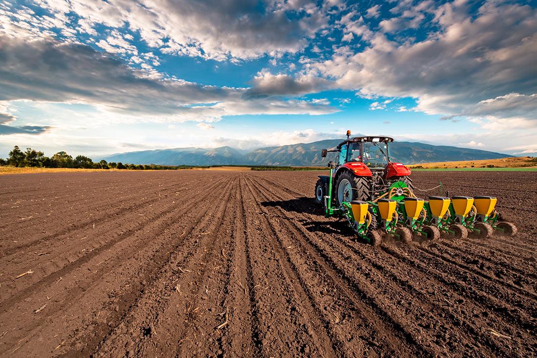 В Украине посевной займется совет по продовольственной безопасности