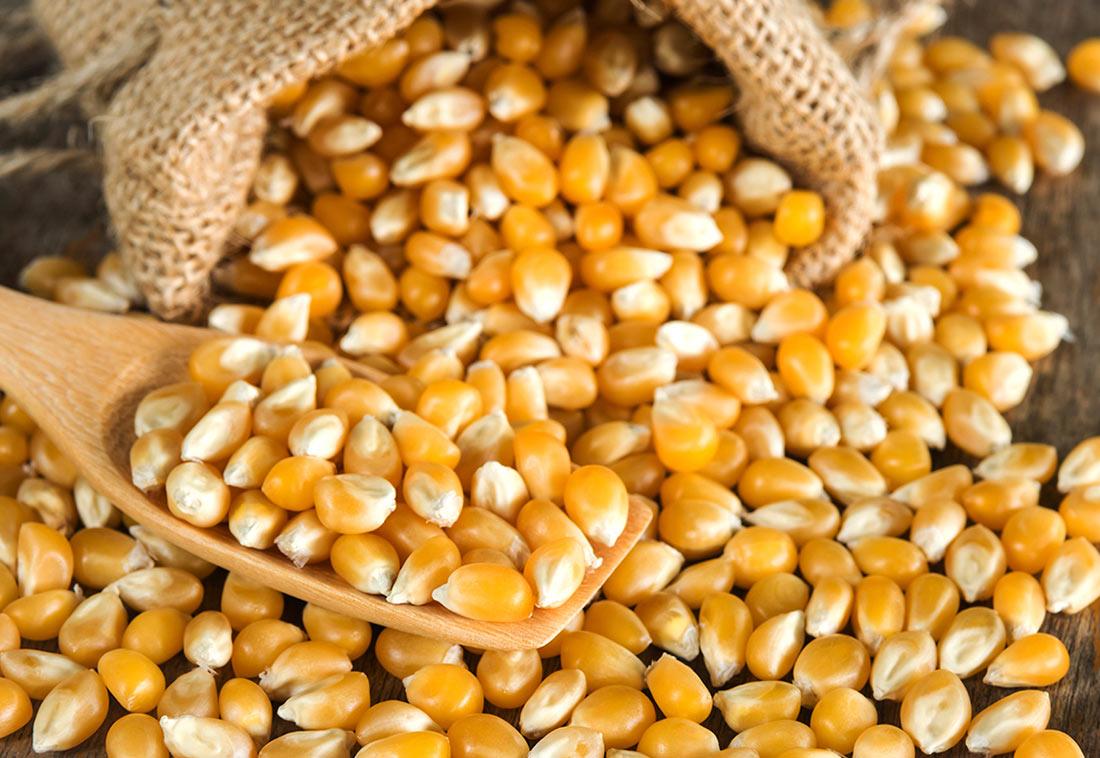Экспорт украинского зерна: новые цифры