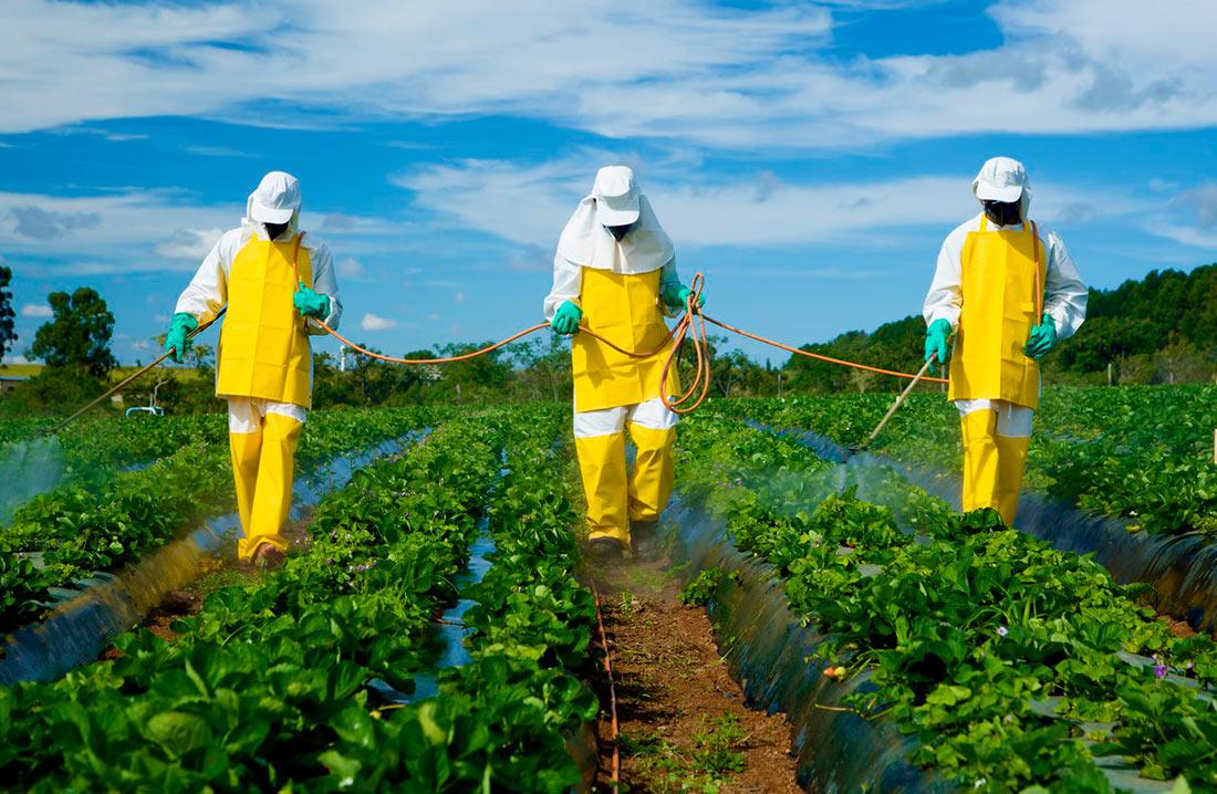 Новые исследования EFSA о пестицидах уже успели раскритиковать