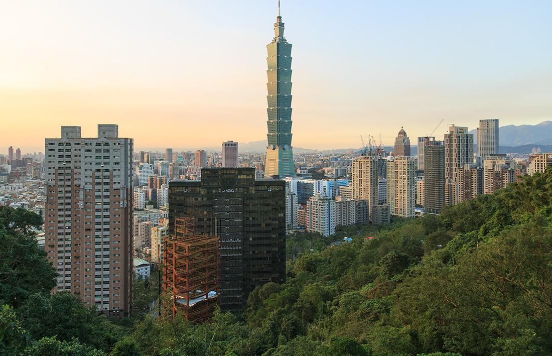 На Тайване появились куры в шлемах (ФОТО)