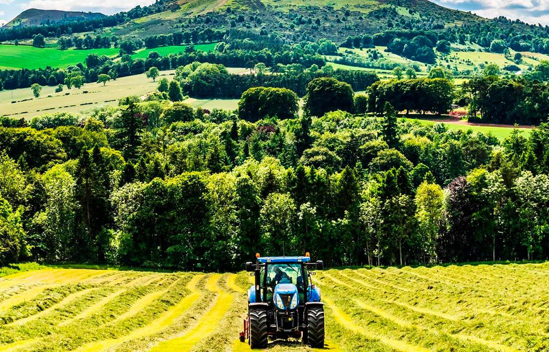 В Украине наблюдается значительное падение сельхозпроизводства