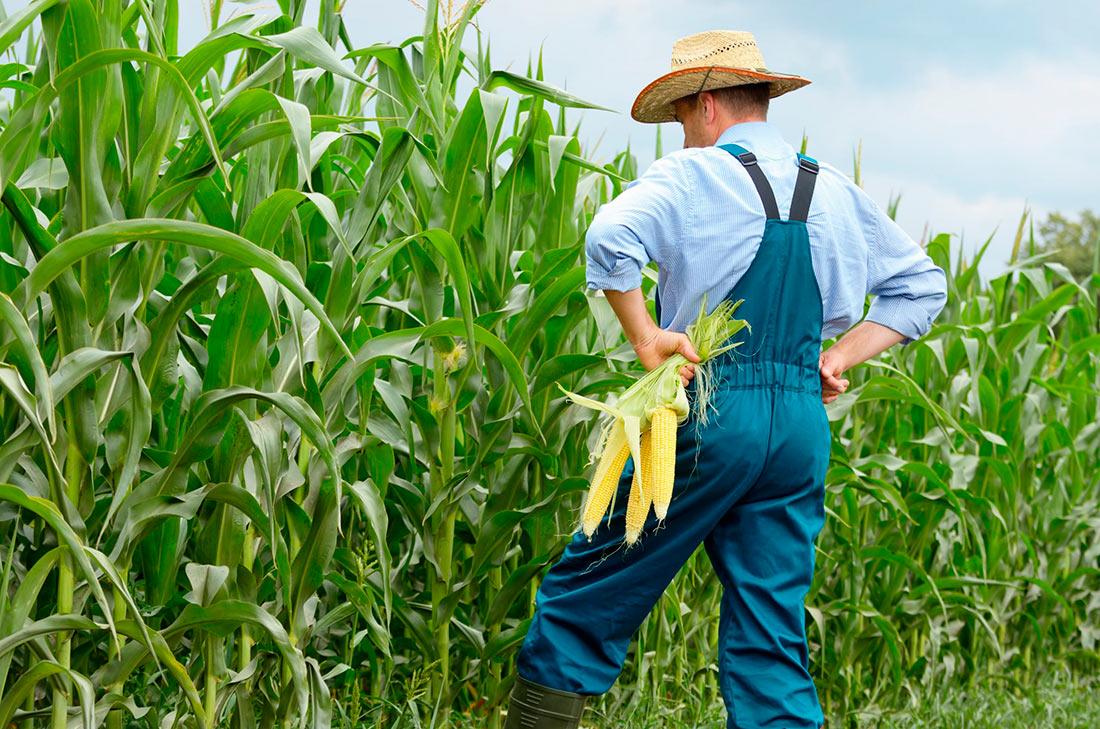 Недобросовестные фермеры будут попадать в чёрный список