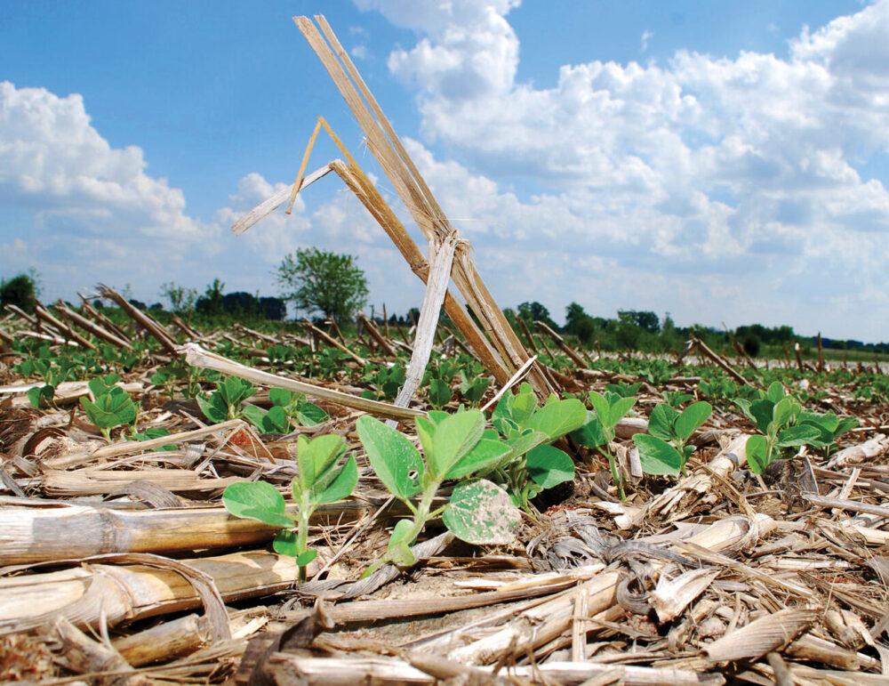 Зміна клімату:технологічні аспекти систем землеробства