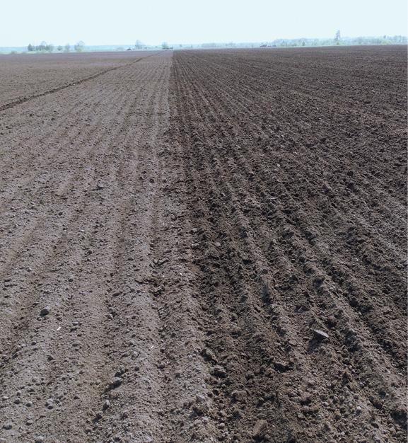 Как создать  зону комфорта:  готовим почву под озимые