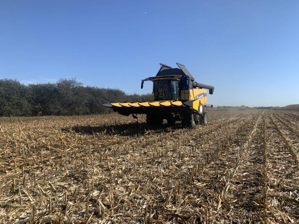Українська аграрна політика: ні риби, ні вудочки