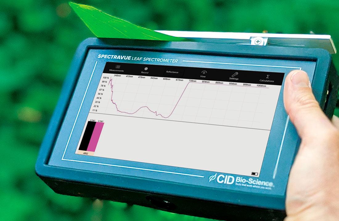 Новый измеритель листьев определил срок годности продуктов питания