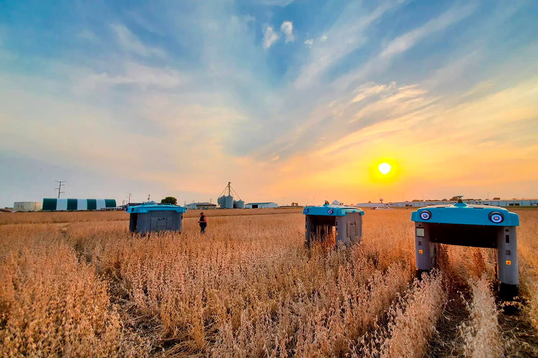 Робот от Google будет анализировать посевы (ФОТО)