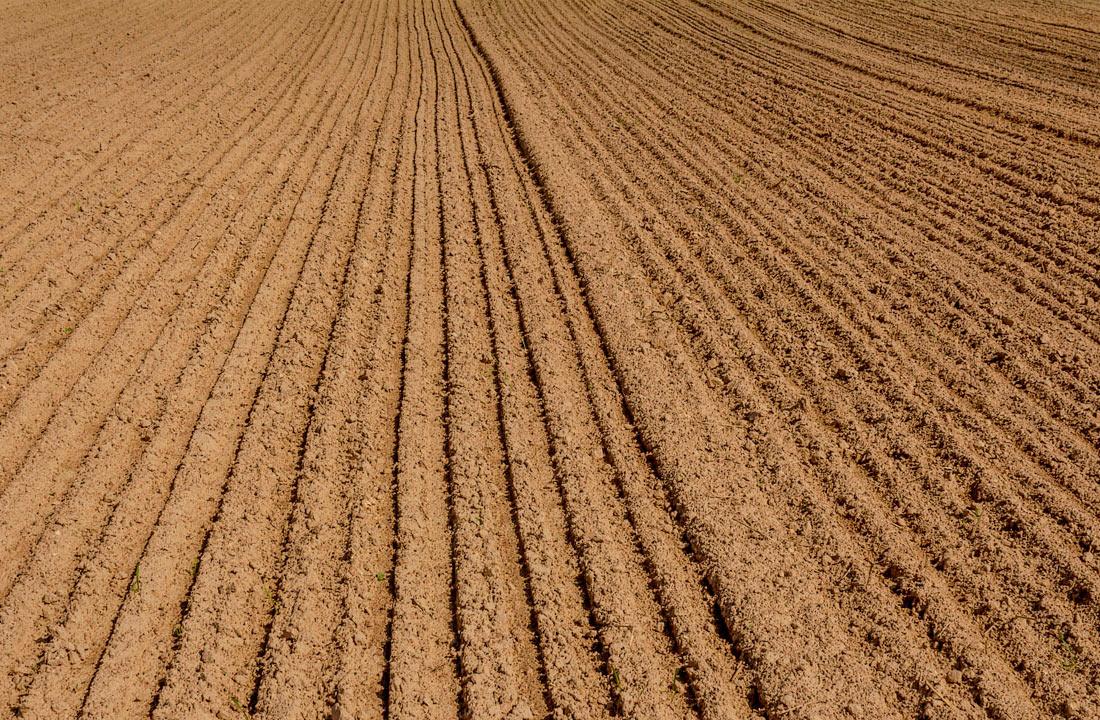 Площадь орошаемых земель в Украине может вырасти на треть