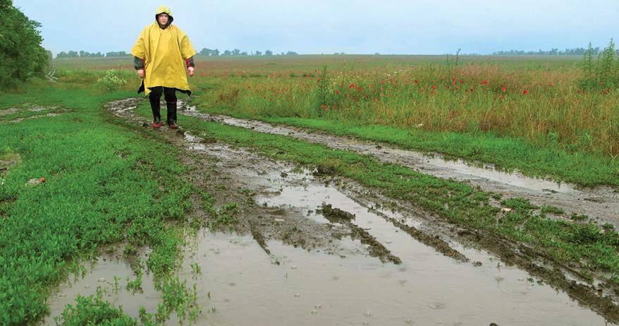 Неякісні краплі: Україні слід боротися за кожен міліметр опадів