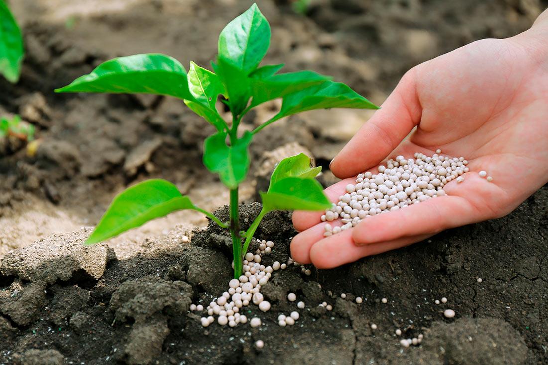 Отмечается сокращение импорта азотных удобрений