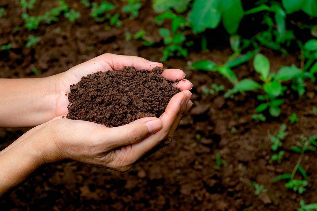 Появилась законодательная инициатива по отмене постоянного землепользования