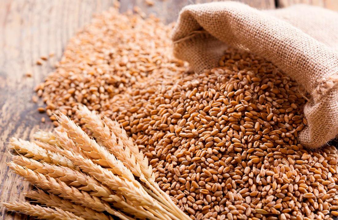Озвучено «трійку» країн, які скаржаться на наше зерно