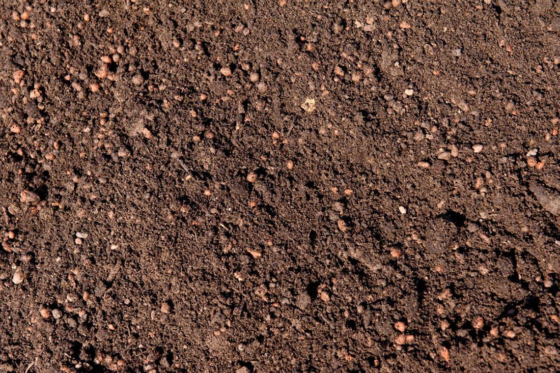 Минагрополитики отчиталось, сколько куплено земли (29.07.21)